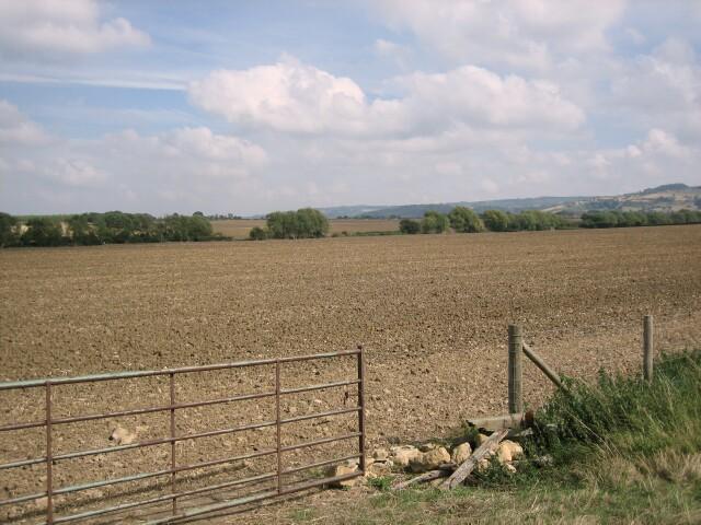 Fields near Wormington