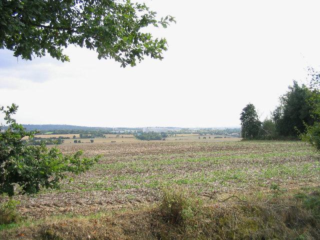 Fields near Little Burstead Church, Essex