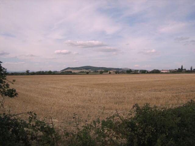 Fields near Toddington