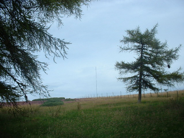 Satter Hill