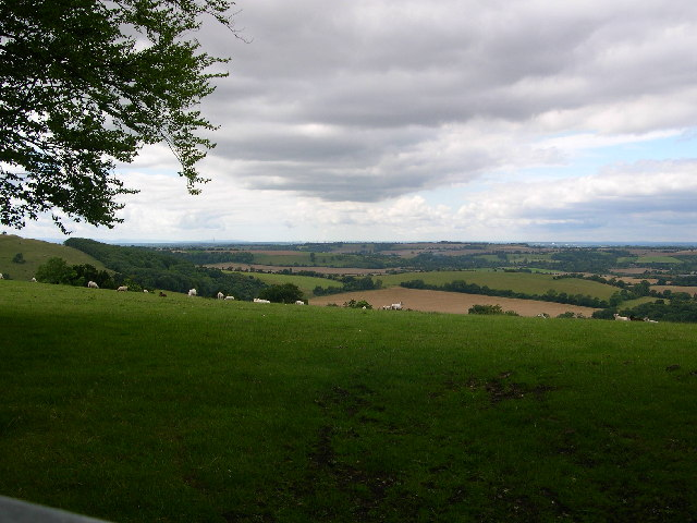 Old Winchester Hill Lane SW View
