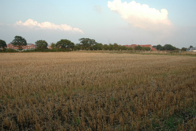 Farm land near Upton Rock, Widnes