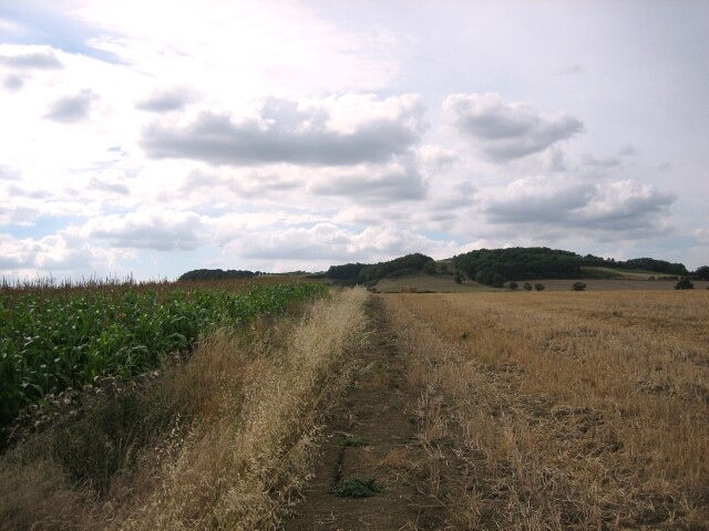 Crop near North Lodge