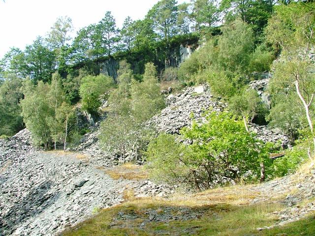 Former Slate Quarry, Moss Rigg Wood