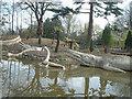 TQ3470 : Dinosaurs at Crystal Palace Park by Peter Jordan