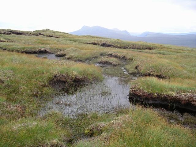 Bog pool, Creagan nan Laogh