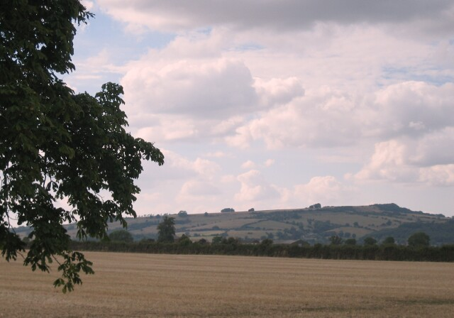 Fields near Dumbleton