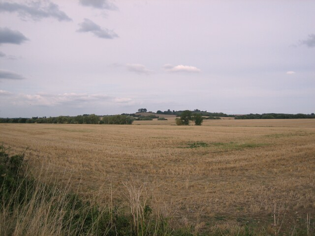 Fields near Sedgeberrow