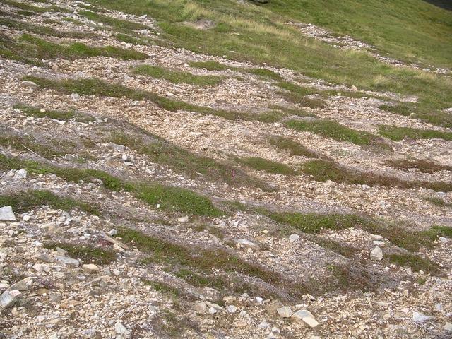 Gravel/Vegetation stripes, Sail an Tuim Bhain