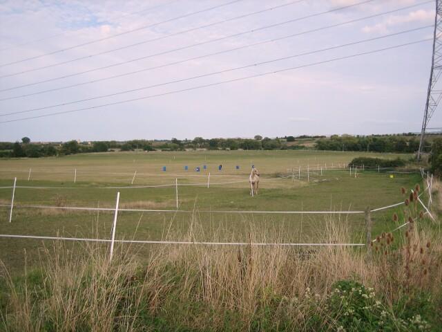Merrybrook Equestrian Centre