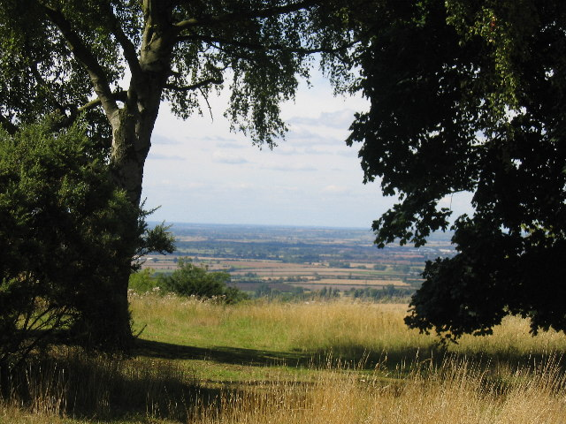The view from Coombe Hill, through trees