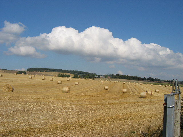 Harvest scene on the Kinross/Fife border