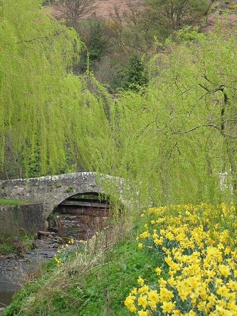 Old Menstrie Bridge