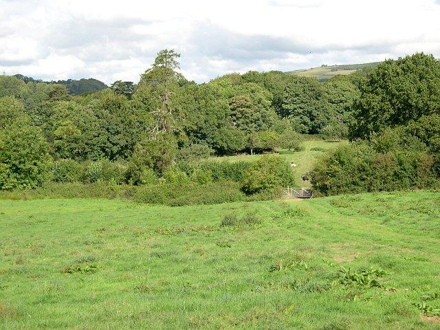 Pasture land in the Erme Valley near Thornham