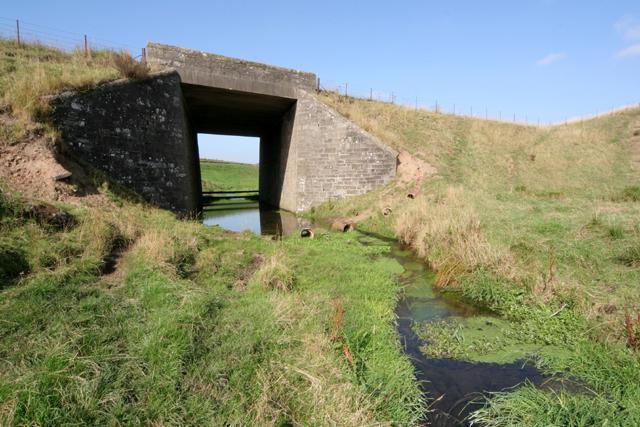 Bridge over the Dronley Burn
