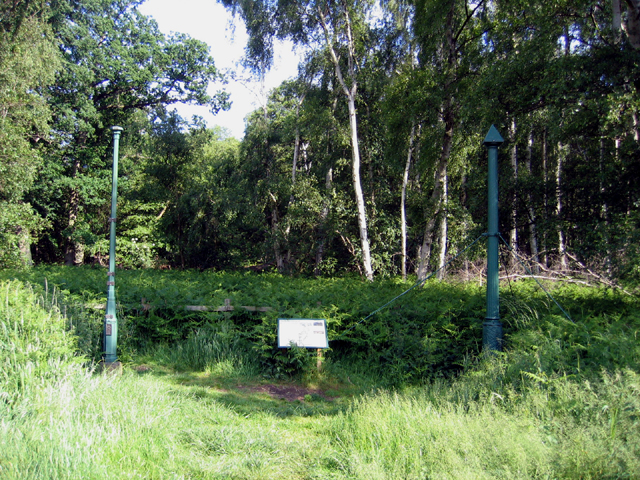 Holme Fen Posts, Cambs