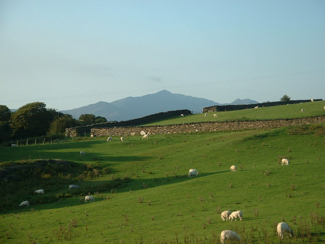 Farmland at Llandecwyn