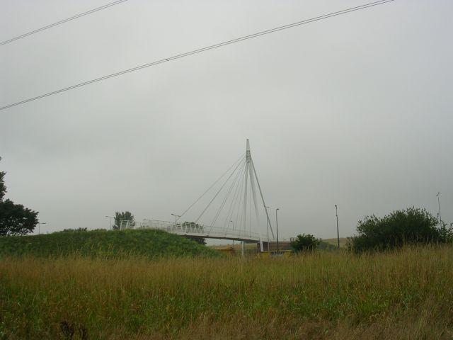 Cycleway crosses Motorway