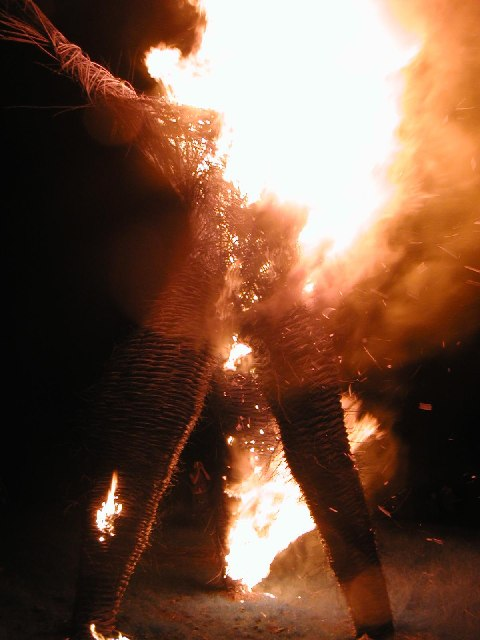 The Wicker Man burns