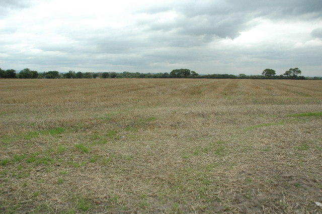 Farm land near Culcheth