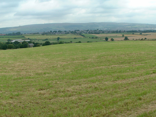 Freezeland Farm