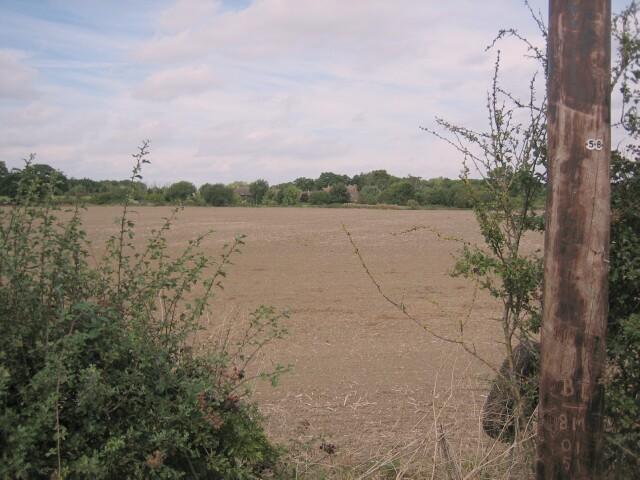 New Farm, Besford