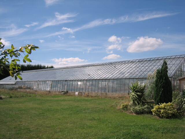 Glasshouse, Drakes Broughton