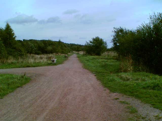 Shirebrook Nature Reserve