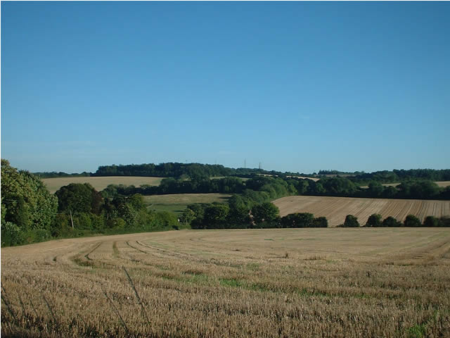 After the harvest - fields between Dean and Sparsholt