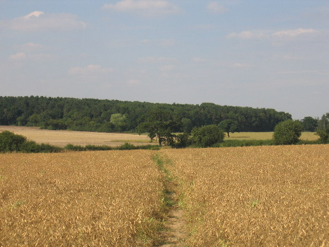Footpath from Weston under Wetherley to Bubbenhall.