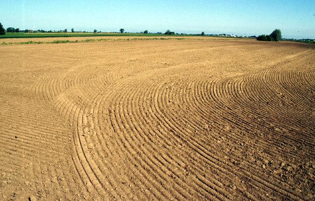 Farmland near Bicker
