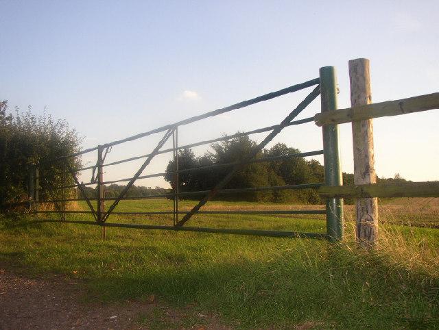 20 bar gate?