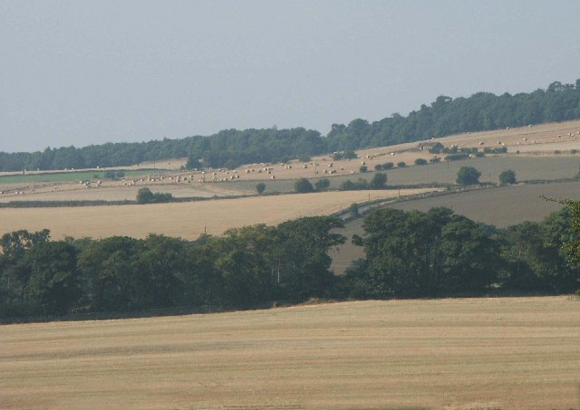 Bouprie and Pleasants Farms