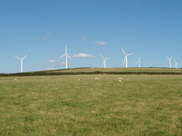 Sheep and Wind Farm, Bear's Downs, St Eval