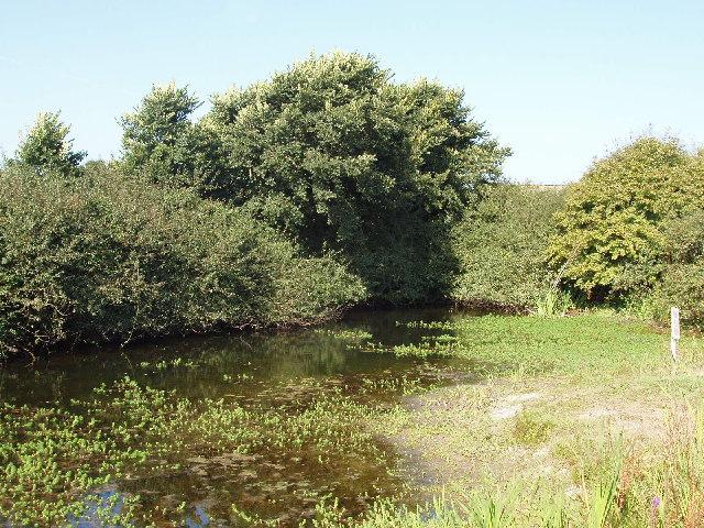 Towan Pond