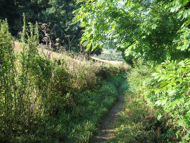 Footpath to Mantles Green