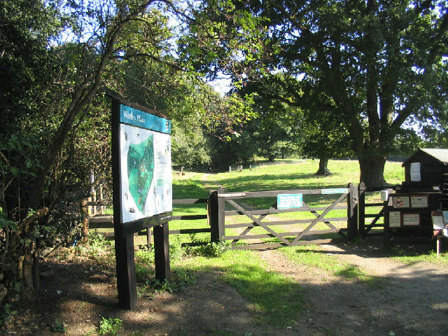 Warley Place Nature Reserve, Great Warley