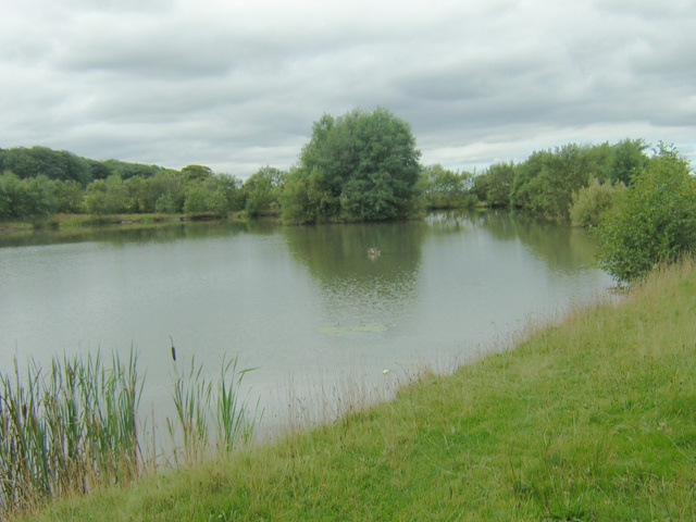Fishing Pond at Meadow Pit