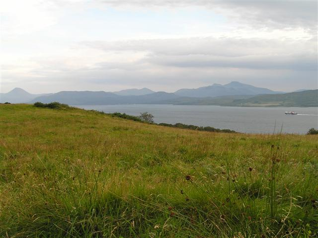 Grazing grassland with view to Mull and a CalMac Ferry.