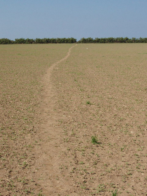 Footpath across the fields in Harlyn