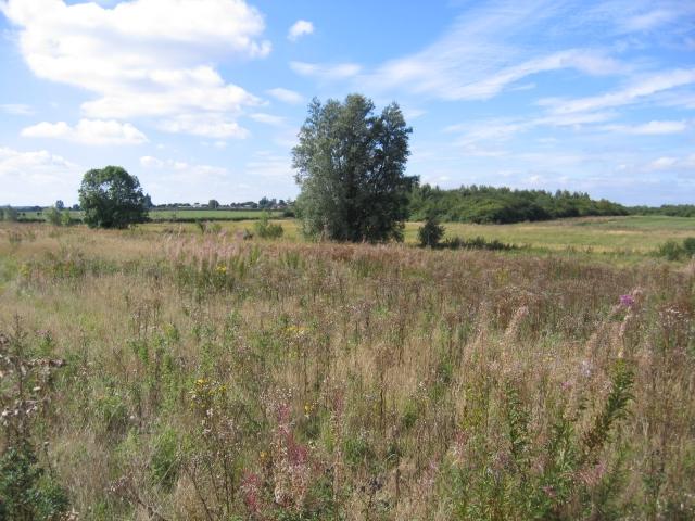 Open land between Henlow & Langford, Beds
