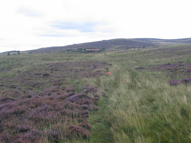 Moorland, Temple Hill.