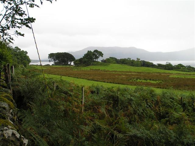 Farmland along the coast of Morvern