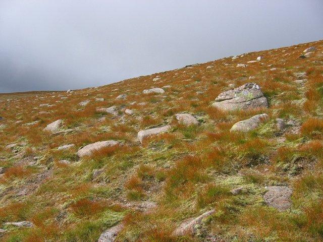 Granite gravels, Cairn Lochan.