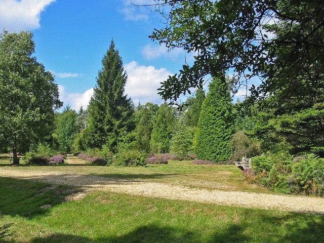 Blackwater Arboretum, New Forest