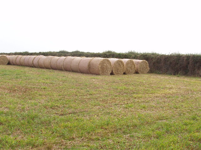 Straw and stubble, field near Trevone