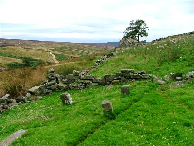 Old Stackyard Staddle Stones, Head House, Arnsgill