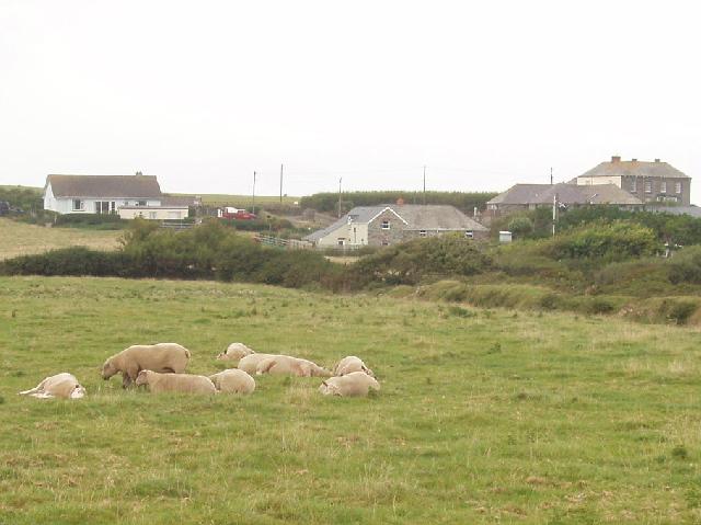 Carnevas Farm, near Porthcothan