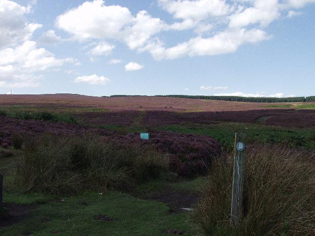 Offa's Dyke Long Distance Footpath