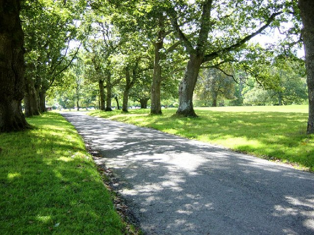 Driveway at Lanhydrock
